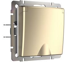 Розетка Встраиваемые механизмы шампань W1171211