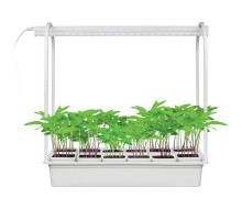 Настольная лампа для растений ULT-P34-10W/SPBR IP20 WHITE 12