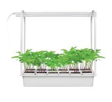 Настольная лампа для растений ULT-P34-10W/SPSB IP40 WHITE 12